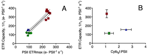 (a) Electron Transport Capacity away from Photosystem II 1/τ2 (e− PSII−1 s−1) plotted versus maximum Electron Transport Rate for Photosystem II under saturating light (e− PSII−1 s−1); each point represents a paired measurement of the two parameters on an independent culture. Prochlorococcus MIT 9313: blue triangles; Prochlorococcus MED 4: green circles; Synechococcus WH8102: red squares. Line shows linear regression through the pooled points from all three strains; R2 = 0.89, dotted lines show 95% confidence interval on the pooled regression; (b) Electron Transport Capacity away from Photosystem II 1/τ2 (e− PSII−1 s−1) (n = 3–6 independent determinations, ±95% confidence interval on the y-axis) plotted versus the ratio of Cytb6f: PSII (n = 6 independent determinations, ±95% confidence interval on the x-axis);(c) Electron Transport Capacity away from Photosystem II 1/τ2 (e− PSII−1 s−1) (n = 3–6 independent determinations, ±95% confidence interval on the y-axis) plotted versus the ratio of Cytb6f : PSI (n = 6 independent determinations, ±95% confidence interval on the x-axis); (d) Electron Transport Capacity away from Photosystem II 1/τ2 (e− PSII−1 s−1) (n = 3–6 independent determinations, ± 95% confidence interval on the y-axis) plotted versus the ratio of PSI: PSII (n = 6 independent determinations, ±95% confidence interval on the x-axis); (e) Electron Transport Capacity away from Photosystem II 1/τ2 (e− PSII−1 s−1) (n = 3–6 independent determinations, ± 95% confidence interval on the y-axis) plotted versus the ratio of RUBISCO: PSII (n = 6 independent determinations, ±95% confidence interval). Line shows linear regression; R2 = 0.99, dotted lines show 95% confidence interval on the pooled regression.