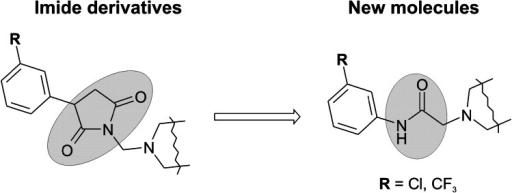 The exchange of the pyrrolidine-2,5-dione core fragment for chain amide bound