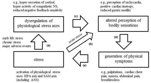 Synthesis of findings on acute and chronic stress, dysregulation of physiological stress axes, altered interoception and the generation of physical symptoms into model comprising a positive feedback loop.