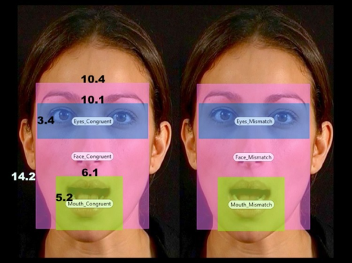 An example of the visual stimuli used in the experiment, including the positioning and sizes in visual angle of the Areas-Of-Interest (eyes, face, and mouth).