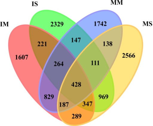 Venn diagram showing the shared bacterial OTUs (at a distance of 0.03) in all soil samples. MM, mulberry monoculture; IM, intercropping mulberry; SM, soybean monoculture; IS, intercropping soybean.
