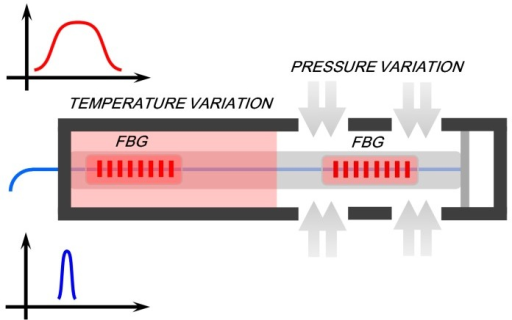 Schematic diagram of FBG sensor for simultaneous temperature and pressure measurements simultaneously.