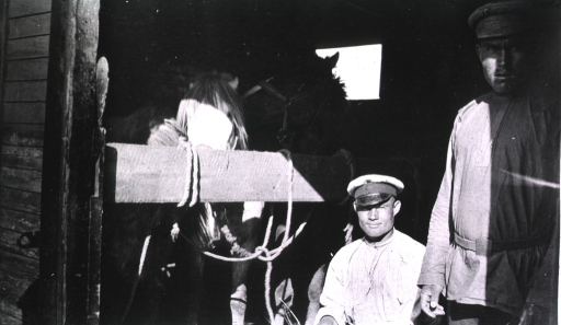 <p>Two men wait with two horses inside a railroad car in Harbin.</p>