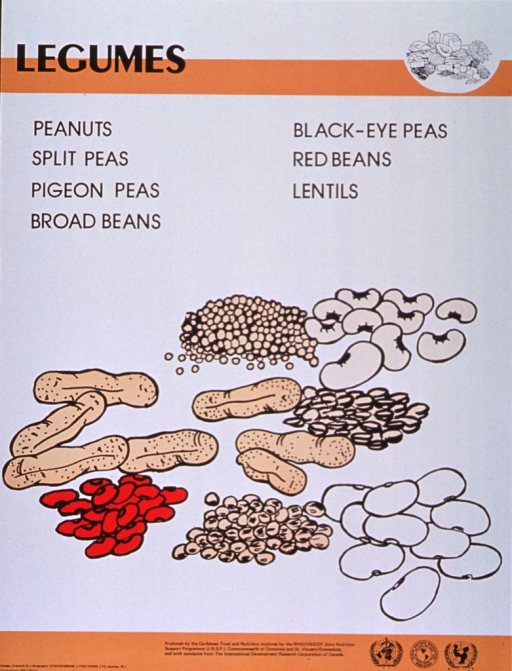 <p>Predominantly white poster with black lettering and orange highlights.  Title at top of poster along with a line drawing of several different foods.  Specific legumes listed below title.  Dominant visual image is a color illustration of many kinds of beans and some peanuts.  Publisher and sponsor information at bottom of poster.</p>