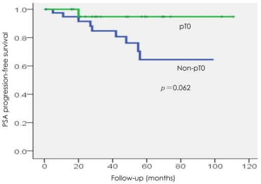 PSA progression-free survival in the pT0 and non-pT0 groups.