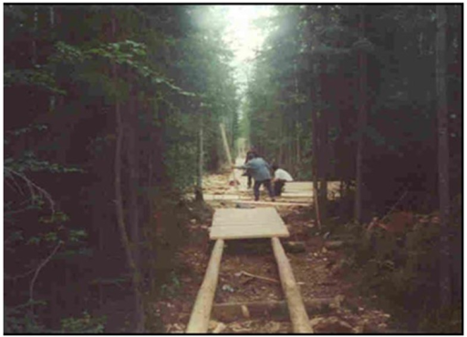 Image showing a boardwalk portion of the walking trail under construction.