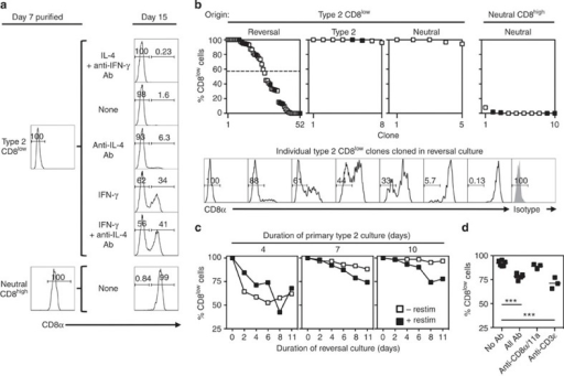 IFN-γ induces CD8 re-expression on some CD8low cells.(a) Surface CD8 expression by 7-day type 2 CD8low cells and neutral CD8high cells before and after purification and restimulation with anti-receptor Ab and IL-2 for 8 days in the indicated conditions. (b) CD8 expression by clones grown from single twice-purified 7-day type 2 CD8low cells and neutral CD8high cells cultured with anti-receptor Ab and IL-2 in reversal (IFN-γ and anti-IL-4 Ab), type 2 or neutral conditions for 13 days. Cells expanded 911-fold during primary activation (≥9–10 cell divisions). Cloning efficiencies were CD8low→reversal, 13.1%; CD8low→type 2, 6.6%; CD8low→neutral, 14.3%; CD8high→neutral, 15.8%. Upper panels show clones estimated to contain ≥100 cells from two independent experiments (filled and empty symbols) ranked by % CD8low cells (dashed line: median % CD8low). Lower panels show representative CD8low clones cultured in reversal conditions (isotype control staining of pooled clones in grey). (c) Percent CD8low cells among twice-purified CD8low cells from primary type 2 cultures after re-culture in reversal conditions with or without anti-receptor Ab (n=3, except day 4 primary cells re-cultured for 2 days with (n=2) or without (n=1) restimulation) (representative of three independent experiments). (d) Percent CD8low cells among twice-purified CD8low cells from 7-day type 2 cultures after re-culture for 8 days in reversal conditions with the indicated immobilized Ab (***P<0.001, one-way ANOVA with Bonferroni's post test for multiple comparisons) (representative of three independent experiments).
