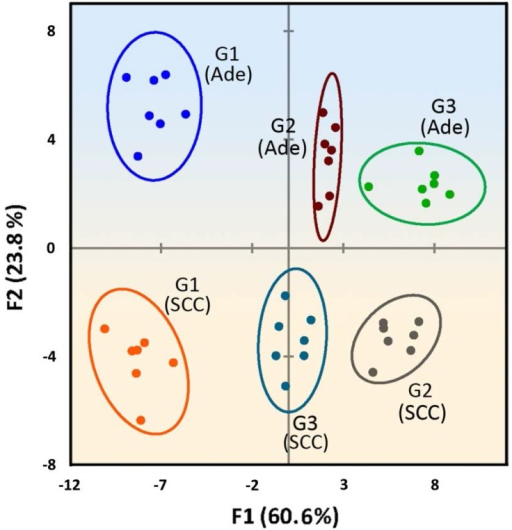 Two-dimensional LDA score plot derived from combining the absorbance response patterns of different grades of two tumor types, with 95% confidence ellipses. The color shading is drawn to show the distinct regions between Ade and SCC tissues.