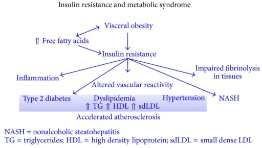 Pathophysiology of insulin resistance in metabolic syndrome [56].