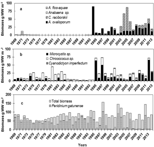 The annual maximum biomass of (a) Nostocales species, (b) Chroococcales species and (c) Peridinium and total biomass in Lake Kinneret, 1969–2014. The biomass measurements were based on phytoplankton counts in samples collected from various depths at biweekly intervals. Depth-integrated biomass was done as described by Berman and Pollingher (1974) [17] and Zohary (2004) [18]. During stratification, the depth-integrated biomass was calculated from zero to mid-thermocline, between 15 and 20 m (epilimnion); during mixis, the integration was over the entire water column. Wet weight (WW) was calculated according to the geometric shape of the species [19], assuming that the density of the algae is one.
