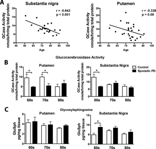 GCase activity is gradually decreased in the substantia nigra and putamen during normal aging. Brain tissue homogenates from frozen postmortem brain samples were used for measurements of GCase using a 4-methylumbelliferyl activity assay. (A) GCase activity gradually decreased in the substantia nigra and the putamen over the sixth to eighth decade of life in healthy subjects. (B) GCase activity remained consistently low in non-GBA mutation carrying PD patients across the sixth to eighth decade of life in comparison to healthy age-matched controls. (C) By the seventh and eighth decade of life GCase activity levels in healthy subject controls looked similar to PD patients in the substantia nigra and putamen, respectively. GluSph levels were increased in sporadic PD patients at the sixth decade of life in the substantia nigra, but did not change in the putamen. *P < 0.05, two-way ANOVA with Bonferroni post hoc analysis, correlation analysis completed by Pearson test. N = 23/disease cohort. Graphs are expressed as mean ± SEM. GCase, glucocerebrosidase; GluSph, glucosylsphingosine; PD, Parkinson's disease; SEM, standard error of the mean; ANOVA, analysis of variance.