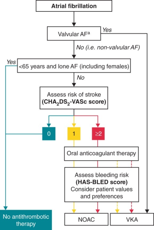 European Society of Cardiology (ESC) guideline recommendations for the prevention of stroke in patients with AF.12 Antiplatelet therapy with ASA plus clopidogrel, or—less effectively—ASA only, should be considered in patients who refuse any oral anticoagulant or cannot tolerate anticoagulants for reasons unrelated to bleeding. If there are contraindications to oral anticoagulation or antiplatelet therapy, left atrial appendage occlusion, closure, or excision may be considered. CHA2DS2-VASc score: turquoise, 0; yellow, 1; red, ≥2. Line: solid, best option; dashed, alternative option. aIncludes rheumatic valvular disease and prosthetic valves. AF, atrial fibrillation; ASA, acetylsalicylic acid; CHA2DS2-VASc, ESC-recommended stroke risk score [Congestive heart failure/left ventricular dysfunction, Hypertension, Age ≥75 years (doubled) Diabetes, Stroke (doubled), Vascular disease, Age 65–74 years, Sex category (female)]; HAS-BLED, [ESC-recommended bleeding risk score, defined as Hypertension, Abnormal renal/liver function, Stroke, Bleeding history or predisposition, Labile INR, Elderly (e.g. age >65 years, frailty, etc.), Drugs/alcohol use]; NOAC, non-vitamin K antagonist oral anticoagulant; VKA, vitamin K antagonist. From Camm et al. 2012 focused update of the ESC Guidelines for the management of atrial fibrillation. European Heart Journal Nov 2012, 33(21) 2719–2747. Reproduced with permission of Oxford University Press (UK) © European Society of Cardiology, www.escardio.org/guidelines