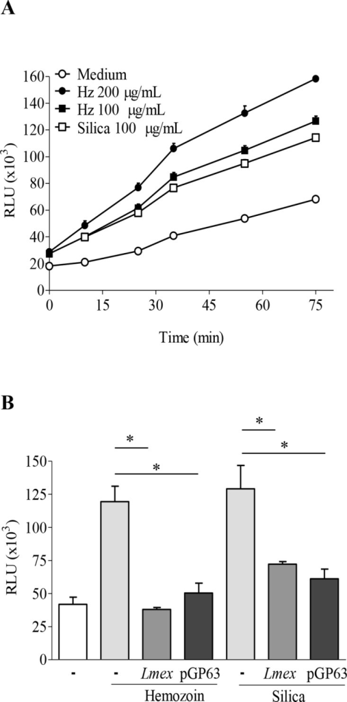 Leishmania parasites and purified GP63 inhibit generation of ROS induced by inflammasome activator.(A and B) PMA-differentiated THP-1 cells (0.1x106 cells/100 μL) were stimulated with indicated concentration of HZ or silica (A) or pre-infected/incubated with either Leishmania or purified GP63 (pGP63) for 2 hrs, and then stimulated with 200 μg/mL of HZ or 100 μg/mL silica (B). After indicated time of incubation (A) or 1.5 hrs (B), ROS production was measured by fluorescence using DCFA. Differences were considered significant for p < 0.05. Data shows mean values with SEM of 3 independent experiments. (#) denotes significant changes between uninfected and HZ treated samples. (*) denotes significant changes of ROS production due to Leishmania infection or pGP63. Both Leishmania and purified GP63 inhibit ROS production induced by inflammasome activators.