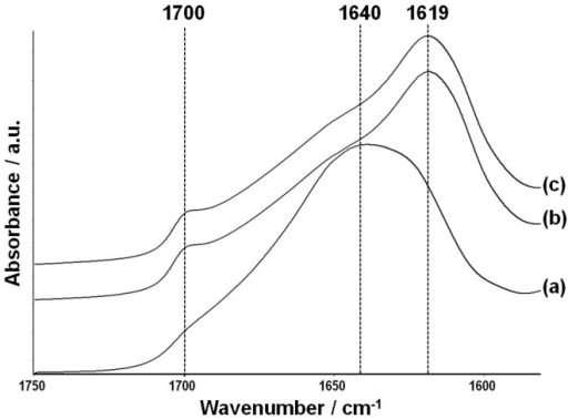 Fourier-transform infrared spectroscopy-ATR spectra of non-treated (a), PEG-treated (b), and genipin-crosslinked PEG-treated (c) fibroin membranes.