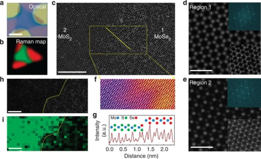 STEM Z-contrast image and elemental imaging of a heterojunction.(a,b) Optical image and corresponding Raman map of a patterned nanosheet on a SiO2 substrate (scale bar, 5 μm). The SiO2 masks (circular discs in a) are removed during KOH etching, and the transfer of the nanosheet onto the TEM grids. (c) Low-magnification Z-contrast image of the nanosheet showing the MoSe2 and MoS2 regions with a finite boundary across the domains (scale bars, 5 nm). (d,e) Fourier filtered images of the atomic resolution Z-contrast images of the MoSe2 and MoS2 (bottom insets in the images) domains with corresponding fast Fourier transform patterns (top insets in the images). (f,g) Surface and line intensity profiles of the squared and line-marked regions in c. (h,i) Low-magnification image of a boundary with its corresponding electron energy loss spectroscopy map showing the sulfur concentration (scale bars, 5 nm).