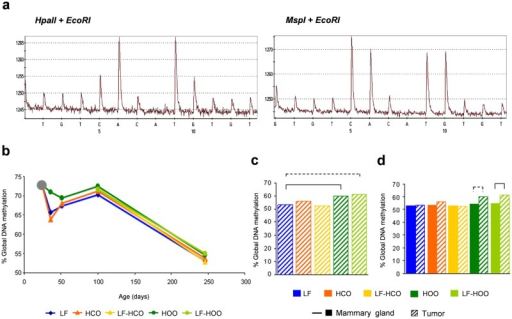 Global DNA methylation level in mammary gland and tumor.(a) Representative pyrograms obtained in LUMA assay of DNA cleaved with HpaII+EcoRI-HF and MspI+EcoRI-HF. (b) Determination of global DNA methylation in mammary gland from all experimental groups along time. (c) Global DNA methylation in tumors from all experimental groups at the end of the assay (246 days). (d) Comparison of global DNA methylation between mammary gland and tumors in each experimental group at 246 days of age. Data shown represent medians of the groups. Full lines connecting groups indicate differences statistically significant (p<0.05); dotted lines indicate differences close to significance (p<0.1).
