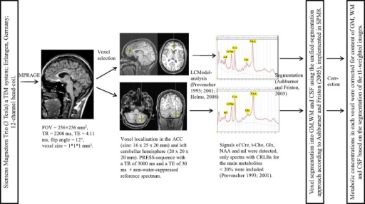 MRI data acquisition and spectroscopic analyses. MPRAGE, magnetization-prepared rapid-acquisition gradient echo; FOV, field of view; TR, repetition time; TE, echo time; ACC, anterior cingulate cortex; PRESS, point-resolved spectroscopy; LCModel, linear combination of model spectra; Cre, creatine; t-Cho, phosphorylcholine + glycerylphosphorylcholine; Glx, glutamate + glutamine; NAA, N-acetylaspartate; mI, myo-Inositol; ppm, parts per million; CRLBs, Cramér-Rao lower bounds; SPM8, Statistical Parametric Mapping – Version 8; GM, gray matter; WM, white matter; CSF, cerebrospinal fluid.