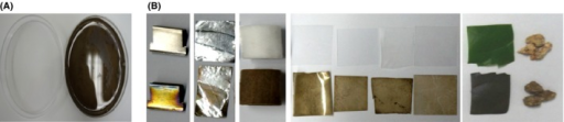 One‐pot modification of solid surfaces through in vitro laccase‐catalysed polymerization of 2,7‐DHN.A. Photograph of dipping media before and after polymerization. Left to right: before polymerization; after polymerization.B. Left to right: stainless steel; aluminium; cellulose acetate; casted polypropylene; PET; nylon; glass; plant leaf; granite. Top to down: without dipping; with dipping.