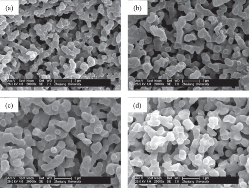 SEM images of ZrO2 monoliths before (a) and after solvothermal treatment with various ammonia concentrations: (b) 0.5 mol L−1, (c) 1.0 mol L−1 and (d) 2.0 mol L−1.