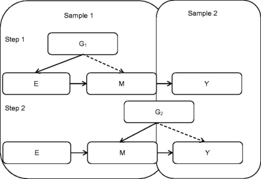 Schematic diagram of two-step, two-sample Mendelian randomization In the smaller Sample 1, the association of the exposure to the intermediate is established using an MR approach (using the exposure-related G1); and the association of an additional variant (G2, not related to the exposure) with the same intermediate is established. G1 and G2 should be identified in an independent study. In the larger Sample 2, the intermediate is shown to influence the outcome through the use of G2, which is related to the outcome. N.B. the dotted arrows represent the fact that these genetic variants, G1 and G2, influence the intermediate or outcome indirectly through the exposure or intermediate, rather than having a pleiotropic effect. In theory, G1 would also be found to influence the outcome indirectly through both the exposure and intermediate.