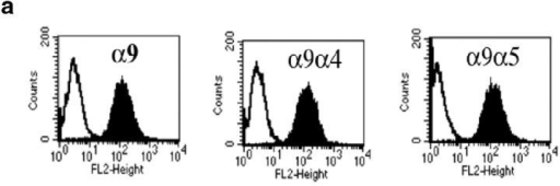 Coimmunoprecipitation of α9β1 and SSAT. (a) Flow cytometric evaluation of cell surface expression of α9 integrin on α9-, α9α5-, and α9α4-expressing CHO cells. Open peaks represent fluorescence (FL) of unstained CHO cells, and shaded peaks represent fluorescence of CHO stained with the anti-α9β1 antibody Y9A2. (b) CHO cells transfected with Myc-tagged SSAT were treated with 50 μM BE-3-3-3 and immunoprecipitated by protein G–Sepharose coated with the anti-α9β1 antibody Y9A2. Precipitated proteins (or cell lysates) were separated by SDS-PAGE and detected with anti-Myc mAb or anti–integrin β1 cytoplasmic domain antiserum. (c) Cell surface proteins were labeled with thiol-cleavable biotin, captured with streptavidin agarose, and eluted by reduction. Eluted proteins were then immunoprecipitated and analyzed as in b.