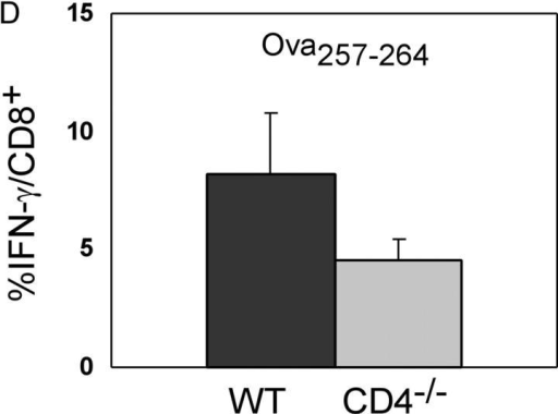 Primary response of wild-type and CD4−/− mice to MHC class I and class II–restricted peptides after rLmOva infection. 7 d after infection, splenocytes were stimulated in vitro with LLO190–201, Ova257–264, or no peptide and stained for levels of intracellular IFN-γ. (A) Response of CD4+ T cells to peptides. (B) Response of CD8+ T cells to peptides. Numbers indicate the percentage of IFN-γ–positive cells in the CD4+ or CD8+ population. There were 2.3 × 106 Ova257–264-specific CD8+ T cells in wild-type spleen and 106 in CD4−/− spleen. (C) Lysis of 51Cr-labeled control, Ova257–264, or LLO190–201-coated LB27.4 targets by spleen cells from wild-type (squares) and CD4−/− mice (diamonds) assayed directly ex vivo. These data are representative of four independent experiments of two mice per group. (D) Response of CD8+ T cells to Ova257–264 in wild-type and CD4−/− mice. Data represent the average of eight mice per group.