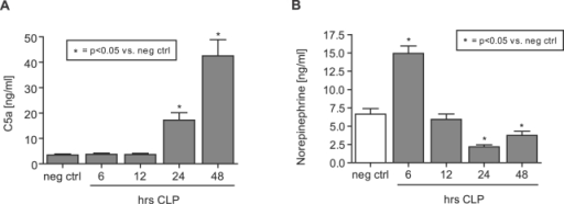 Antipodal levels of C5a and norepinephrine following CLP.Animals were subjected to CLP and plasma was obtained 0–48 hrs after initiation of experimental sepsis. (A) Plasma levels of C5a as a function of time following CLP. (B) Norepinephrine concentrations in plasma 0–48 hrs after CLP. All bars are presented as mean±s.e.m. For each bar n = 4–10.