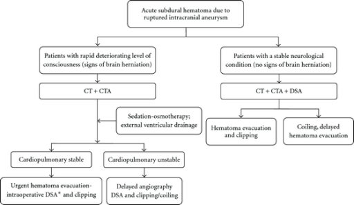 Illustrative schematic diagram of the protocol (management algorithm) for diagnosis and treatment of aneurysmal acute subdural hematoma. CT = computed tomography. CTA = CT angiography. DSA = digital subtraction angiography. * = if available.