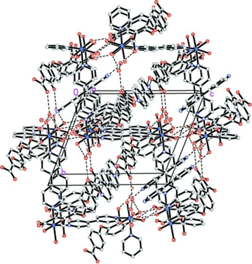 A view of three-dimensional supramolecular structure of (I) resulting from the hydrogen bonding (dashed lines represent donor···acceptor interactions).