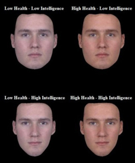 Example of the four face types created by independently manipulated high and low signals of health and intelligence.
