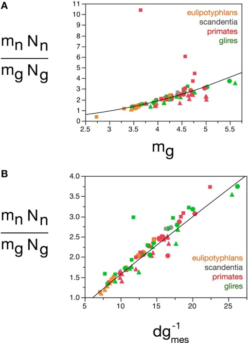 Neuron/glia mass ratio varies with average glial cell mass across brain structures and species. Graphs show the neuron/glia mass ratio (mnNn/mgNg) as (A) a function of estimated glial cell mass (mg) and (B) a function of the inverse of measured glial cell density (d−1gmes) in each brain structure in each species. Average glial cell mass in picograms; d−1gmes in picograms/neuron. Functions plotted are (A)mn.Nn/mg.Ng = 0.064mg2.433 ± 0.260 (r2 = 0.528, p < 0.0001) and (B)mn.Nn/mg.Ng = 0.132 dgmes−11.072 ± 0.034 (r2 = 0.926, p < 0.0001). Cerebral cortex plotted as circles, cerebellum as squares, and rest of brain as triangles; eulipotyphlans shown in orange, primates in red, and rodents in green. Data from Herculano-Houzel et al. (2006, 2007, 2011), Azevedo et al. (2009), Sarko et al. (2009), and Gabi et al. (2010).