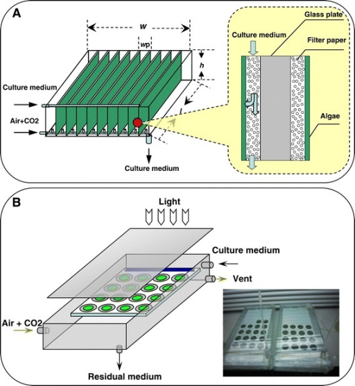 The schematic diagrams of the photobioreactors for attached cultivation. (A) The schematic diagram for the multiple-layer photobioreactor for attached cultivation (adapted from Liu et al. [22]). (B) The schematic diagram and the actual photograph for the single-layer photobioreactor for attached cultivation used in the research.