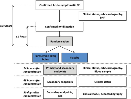 Flow diagram of the DiPER trial. DiPER, Diuretic versus placebo in Pulmonary Embolism with Right ventricular enlargement; PE, pulmonary embolism; BNP, brain natriuretic peptide; RV, right ventricle; SAE, serious adverse events.