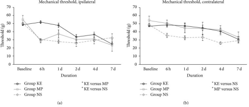 Mechanical allodynia of KE, MP, and NS groups on the ipsilateral (a) and contralateral side (b) from baseline before ischaemia until the first 7 days after reperfusion. On the ipsilateral side, the withdrawal threshold of group KE was significantly higher than that of NS (P < 0.01) and MP (P < 0.05). On the contralateral side, the withdrawal threshold was higher in both KE (P < 0.05) and MP (P < 0.05) groups than that in group NS; *P < 0.05; **P < 0.01.