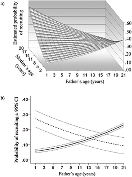 Effect of combined parental ages on estimated probability of recruiting into the breeding population.(a) The surface, generated from a GLMM, is based on 3,361 fledglings (P = 0.015). (b) For illustration, predictive curves were generated by GLMM estimates for very young mothers (≤4 years; solid line) and very old mothers (≥13 years; dashed line).