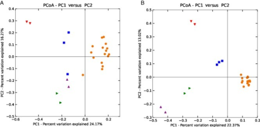 (A) Archaeal and (B) bacterial phylogenetic distances between samples as determined by unweighted UniFrac principal coordinate analysis (red = manure; blue = digester RM; orange = digester RTcSS and R37SS; green = digester R44SS; purple = digester R52SS).