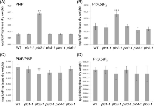 Lipidomic profiling of phosphoinositide levels in 14-day-old seedlings of the plc1-1, plc2-1, plc3-1, plc4-1, plc6-1 mutants compared with the wild type (WT).(A) Phosphatidylinositol 4-phosphate (PI4P), (B) phosphatidylinositol 4,5-bisphosphate [PI(4,5)P2], (C) sum of phosphatidylinositol 3-phosphate (PI3P) and phosphatidylinositol 5-phosphate (PI5P), (D) phosphatidylinositol 3,5-bisphosphate [PI(3,5)P2]. Data are mean±SD of 4 biological replicates. **P<0.01, ***P<0.001 (by Student's t-test).