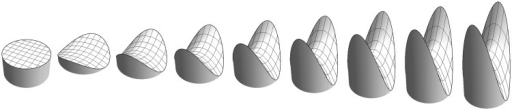 "A symmetrical saddle at various Casorati curvatures. The leftmost instance has curvature zero, thus is planar. For the planar case, the shape index is undefined; thus, this is not really a ""saddle of zero Casorati curvature,"" it is a mere ""flat."" One might as well say it to be a ""cap of zero Casorati curvature!"" Thus, the planar case is not really a shape, just like ""black"" does not own a proper hue. In the real world ""nothing"" is the same as ""anything"" if you allow infinite discriminatory power! In the same sense, flat also means ""no shape"" as much as ""any shape"" (see also Koenderink et al., 2014)."