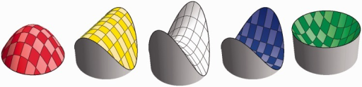 "A cap, ridge, saddle, rut, and cup. The shape indices are, respectively, −π/2, −π/4, 0, +π/4, +π/2. These have the same Casorati curvature. The colors are those of the hue scale used in this article. Notice that complementary colors denote complementary—related as mold and cast—shapes. Thus, the cap fits the cup, the ridge the rut, whereas the saddle fits itself. The scale is actually continuous, thus—for example—there is a smooth range between cap and ridge. The symmetrical caps and cups are special, technically known as ""umbilical."" Likewise, the saddle shown here is special, the ""symmetrical saddle"" or ""minimal surface."" The ridge and ruts are mere transition points. However, when coarse graining, they also subtend finite (though fuzzy) ranges."