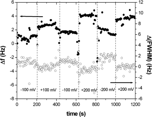 Response (resonance frequency variation, Δf, and resonance frequency distribution full width at half maximum variation, Δ(FWHM)) of prot A+ IgG layer to changes in substrate potential.