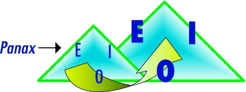 Example of an increase in survival potential in a living system. The diagram shows the evolution from a given health situation and an initial E, I, O triangle (left) to that of an improved E, I, O triangle (right) thanks to an energy, intelligence and organization enhancement, negative entropy, provided by Panax ginseng. This phytoceutical increases all sides of the triangle.