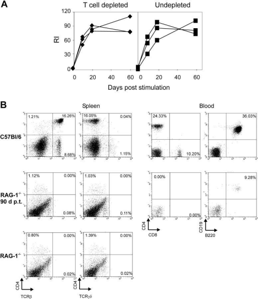 T cell depletion and T cell numbers in recipient mice. (A) RAG-1−/− mice adoptively transferred with immune B cells were injected with 500 μg GK1.5 antibody 2 d before and on the day of stimulation with 10 μg HCMV-DBs. Blood was taken on the days indicated, and sera were analyzed for HCMV-specific IgG (♦) compared with sera of untreated recipients (▪). (B) Spleens and blood were taken from RAG-1−/− mice, RAG-1−/− mice 90 d post adoptive transfer and from donor mice. Single cell suspensions were stained with FITC- or PE-conjugated antibodies and analyzed by FACScan. The specificities of the staining antibodies are indicated at the axes.