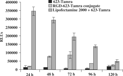 Time–response studies. Cells were treated with either 623-Tamra, RGD–623-Tamra conjugate or 623-Tamra complexed with Lipofectamine 2000, as described in Materials and methods section, and luciferase activity was determined at the times indicated. Black bars represent luciferase activity of 200 nM 623-Tamra, patterned/striped bars represent 200 nM RGD–623-Tamra conjugate and gray bars represent 100 nM 623-Tamra transfected using Lipofectamine 2000, all expressed as RLUs per 105 cells. Results are the means and standard errors of triplicate determinations.
