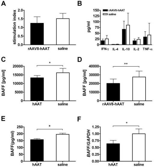 Effects of hAAT therapy on T-cells and B-cells. (A) Proliferative response of splenocytes after stimulation with bovine type II collagen (bCII, 10 μg/ml). Splenocytes (4 × 105 cells/well, in 96-well plate) were isolated on day 28 after rAAV8-hAAT injection. Black bar, AAT gene therapy group (n = 6); open bar, control group (n = 4). Data are expressed as the stimulation index, determined by calculating the ratio of cell proliferation with antigen (measured in counts per minute, cpm) relative to that with medium alone (mean+SD). (B) Cytokine production from bCII-stimulated (100 μg/ml) splenocytes. Values are the mean+SD of each group (n = 6 for rAAV8-hAAT group, black bars; n = 4 for saline group, open bars). (C) Serum level of BAFF in hAAT treated mice (black bar, n = 9, day 35) and control mice (open bar, n = 7). Data is expressed as mean+SD. (D) BAFF serum level in rAAV8-hAAT treated mice (black bar, n = 10, day 28) and control (open bar, n = 10). In vitro effect of hAAT on (E) BAFF secretion into culture medium measured by ELISA and (F) BAFF gene expression determined by real-time PCR. Murine macrophages (RAW 264.7) were treated with hAAT (0.5mg/ml, black bar). Culture medium served as control (open bar). Both experiments were performed in quadruplicates and repeated twice. Data is expressed as mean+SD. *p < 0.05, **p < 0.01.