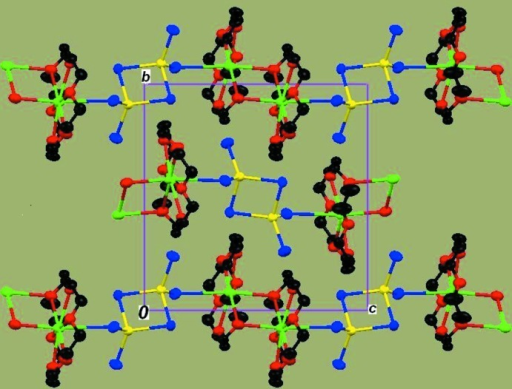 Molecular packing viewed along the a axis.