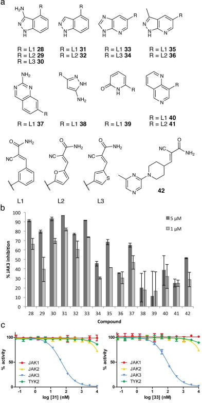 Reversible covalent JAK3 inhibitors discovered via dockinga. First- and second-generation virtual libraries of cyanoacrylamide fragments were screened by DOCKovalent vs. JAK3. Compounds 28–42 were selected and synthesized as described in the Supplementary Information. b. JAK3 inhibition at 1 μM and 5 μM. c. Cyanoacrylamides 31 and 33 are selective for JAK3 over JAK1, JAK2, and TYK2. JAK3 IC50 = 49 nM and 93 nM, respectively. Data represent mean values of two independent experiments ± s.d.