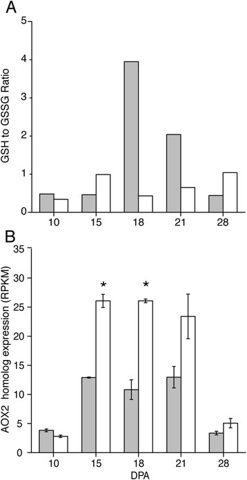 Metabolomic and transcriptomic evidence that transition-stage Gh fiber experiences more oxidative stress than Gb fiber. a) The ratio of reduced glutathione (GSH) to oxidized glutathione (GSSG) in Gb (grey bars) and Gh (white bars) fiber. The ratio is based on the scaled imputed mean for both metabolites. b) The expression level (RPKM) of a putative alternative oxidase (AOX) gene in Gh (white bars) and Gb (grey bars) fiber as derived from RNA-Seq data. The homologous protein in Arabidopsis (AOX2, At5G64210) attenuates ROS production during respiration [91], and the related Gr transcript is Gorai.005G220500.1. Asterisks indicate significant differences between genotypes at a given DPA. Error bars are standard deviation