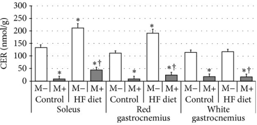 Effect of high-fat diet (HFD) feeding (5 weeks) and/or myriocin application (7 days) on ceramide (CER) content in skeletal muscles (n (per group) = 8). M+: rats administered with myriocin. M−: untreated group. Results are expressed as means ± SD. ∗p < 0.05 compared with control group. †p < 0.05 compared with HF diet group.