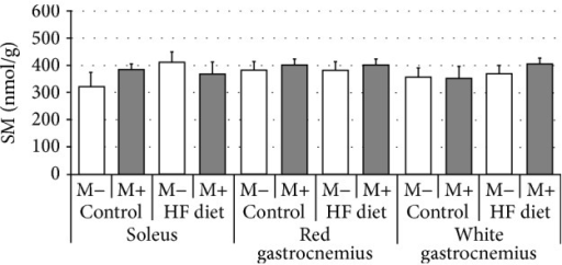Effect of high-fat diet (HFD) feeding (5 weeks) and/or myriocin application (7 days) on sphingomyelin (SM) content in skeletal muscles (n (per group) = 8). M+: rats administered with myriocin. M−: untreated group. Results are expressed as means ± SD.