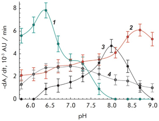 pH-dependence of cell lysis rate in the presence of interleukin-2. 1– Enterobacter aerogenes, interleukin-2 2.0μg/mL. 2 – Bacillus megaterium,interleukin-2 15 μg/mL. 3 – Serratiamarcescens MSU CM 208, interleukin- 2 30 μg/mL. 4– Lactobacillus acidophilus MSU CM 146,interleukin-2 5.0 μg/mL
